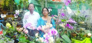 belmond orchid