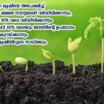 മണ്ണില് പൊന്നുവിളയിക്കാന് സൂക്ഷ്മ കൃഷി